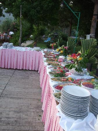 Hotel Asur /Assyrian Hotel: some of the food at the BBQ!