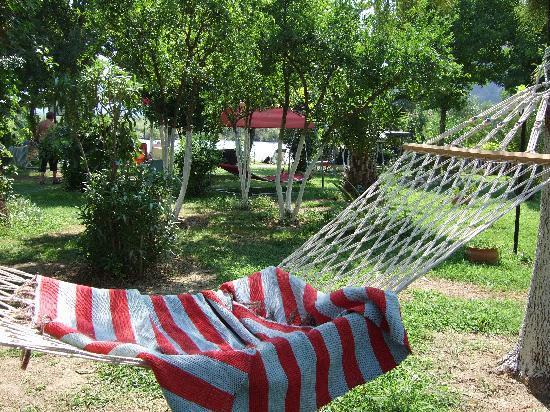 Hotel Asur /Assyrian Hotel: the garden with hammocks