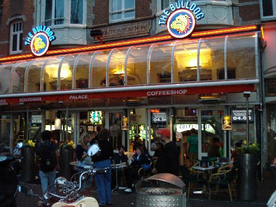 Leiden Platz: Bulldog Coffeehouse