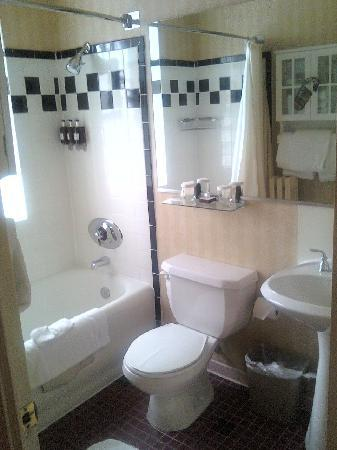City Suites Hotel: Bathroom