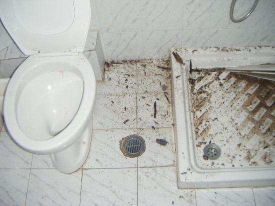 Agios Sostis, Griechenland: rep toilet when ceailing fell doen