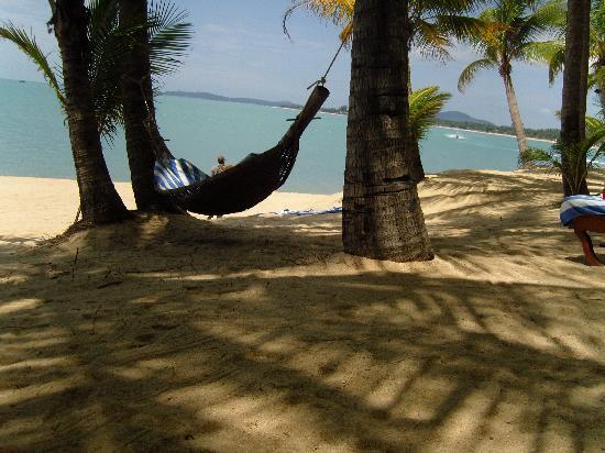 Santiburi Beach Resort & Spa : Strand 2