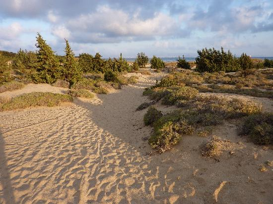 Faros Villa: Aliko beach....Naxos