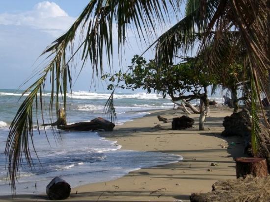 Puerto Viejo Beach: Puerto Viejo