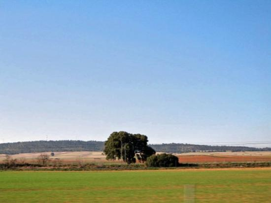 Albacete, España: Castilla La Mancha