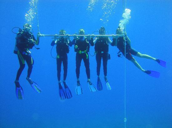 Club Med Columbus Isle: En plongée!