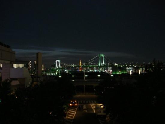 Tokyo Bay Yakatabune Boat: Nighttime view of Tokyo Bay, Rainbow Bridge and Tokyo Tower in the background.