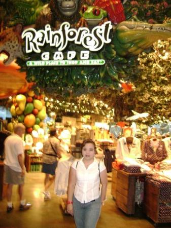 rainforest buffet west wendover restaurant reviews phone number rh tripadvisor com rainbow casino restaurant menu rainbow casino restaurant