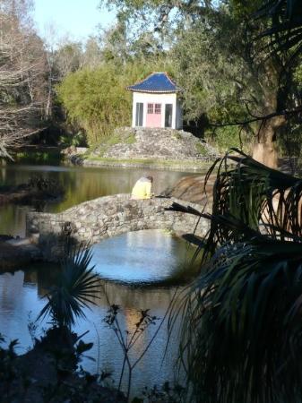 Avery Island, หลุยเซียน่า: Jungle Gardens