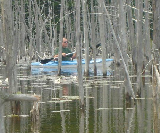 Atlanta, MI: Kayaking on Foch Lake was spectacular