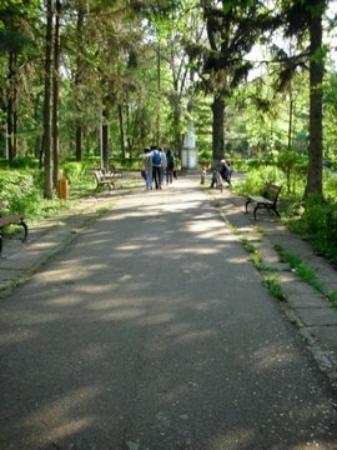 Il Parco di Bacau