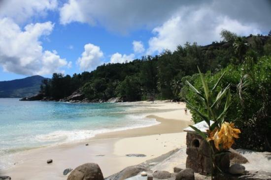 With some seychelles babes picture of mahe island for Villas de jardin mahe island