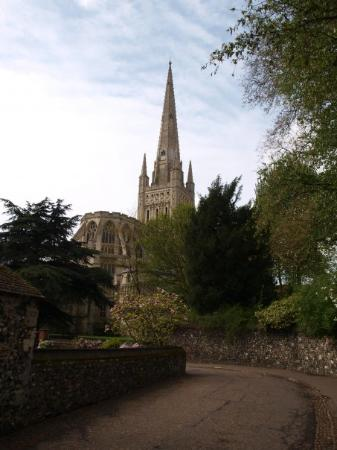 Norwich Cathedral: Norwich