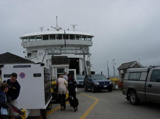 Vineyard Haven, MA: How many cars fit in that ferry?