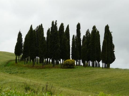 San Quirico dOrcia Photo