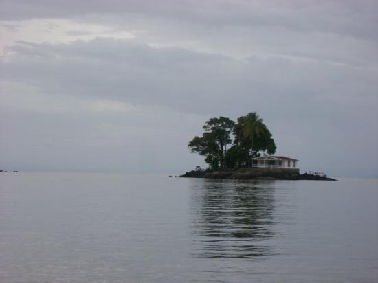 Islets of Granada : One of the Isletas near Granada, Nicaragua. Would any of you want a home on your own little isla