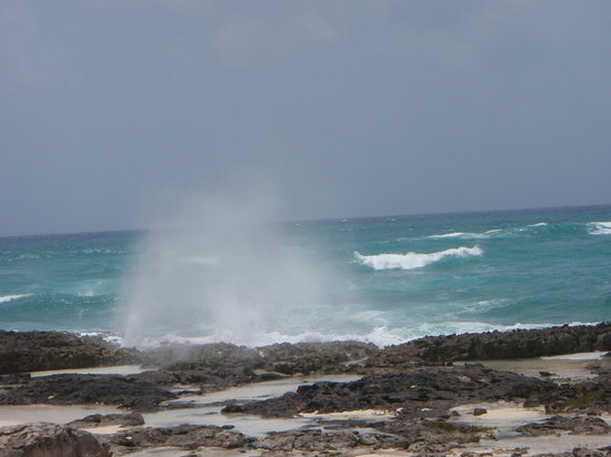 Cozumel, Meksika: Surfs up