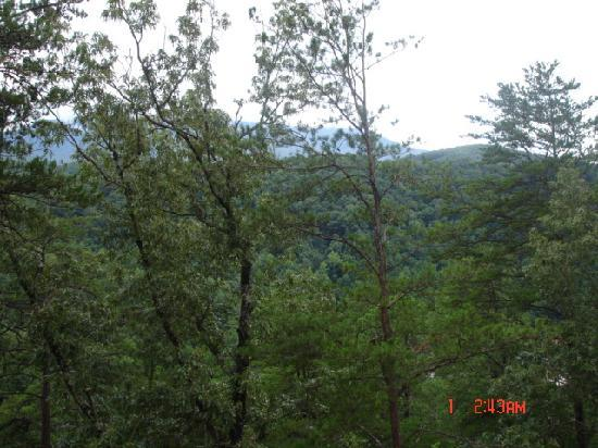 Gatlinburg Falls Resort: This is the view from the deck during the month of August