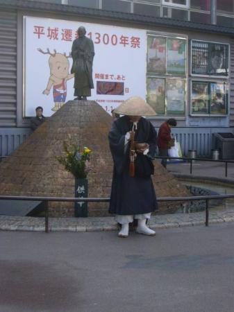 Nara Photo