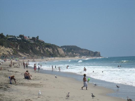 Hotels On The Strand Hermosa Beach Ca