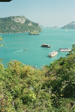 Ko Samui, Thailand: All of the tour boats