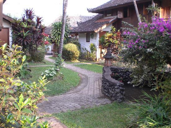 Puri Lumbung Cottages: the grounds at Puri Lumbung