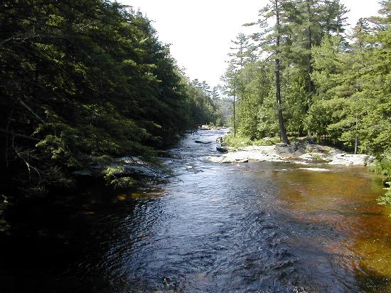 Wentworth: view of river from bridge - 1km up road.
