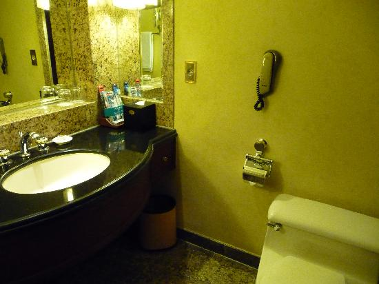 THE PLAZA: Clean and nice bathroom