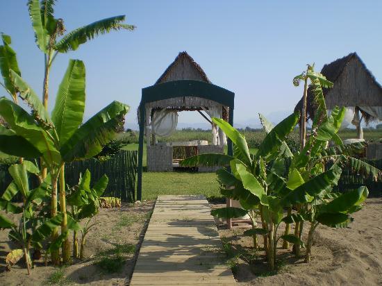 Crystal Paraiso Verde Resort & Spa: Scorcio della spiaggia