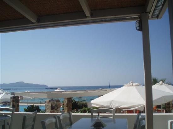 Ammos Hotel: View from restaurant