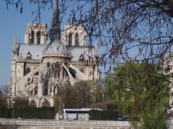 Tours of Notre Dame in Paris