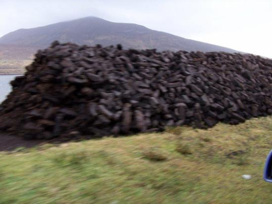 Listowel, Irlandia: This is turf drying.  Truf is sod taken from a bog, dried and burned in the winter.