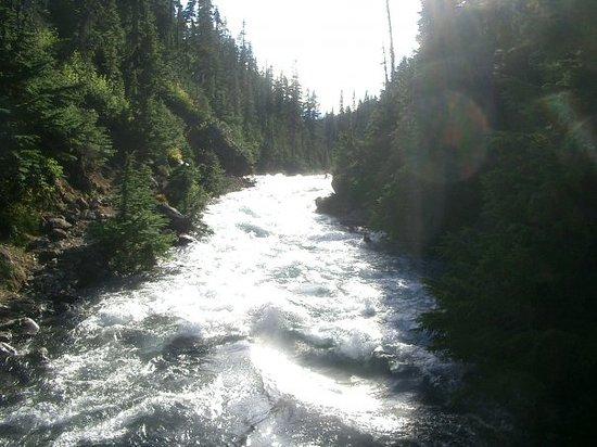 Garibaldi Provincial Park Photo