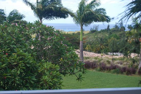 Royal Westmoreland: View from the balcony!