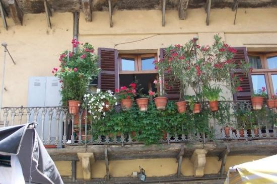 Turin, Italien: L'exubérance toute latine: quelques plantes sur un balcon.
