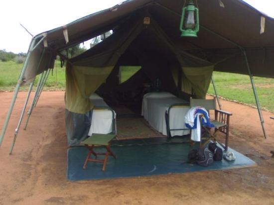 Roaring Rocks: Kudu camp