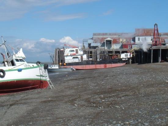 Egegik, Alaska June 2005