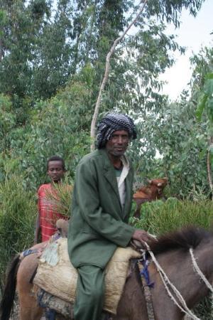 Worabe, Ethiopia: Local Ethiopian Man