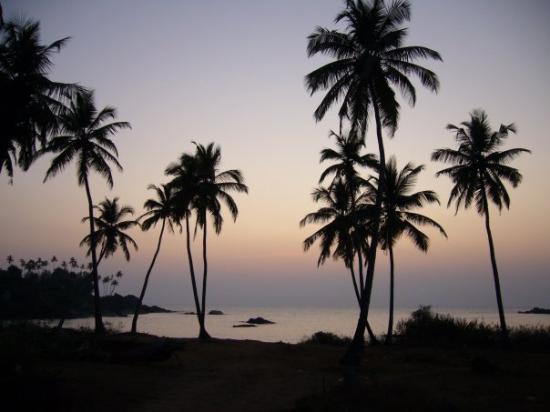 Канакона, Индия: Colomb