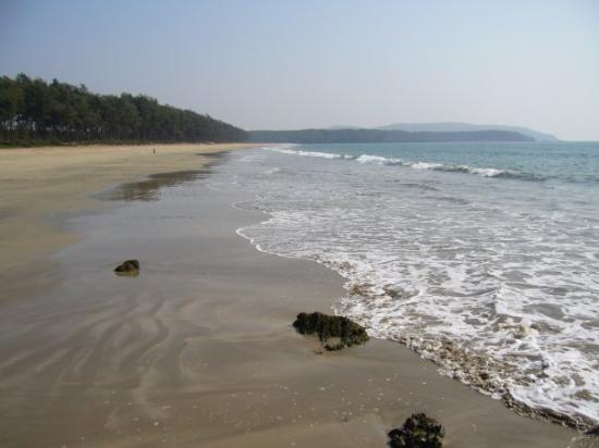 Canacona, India: Turttle Beach