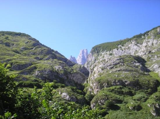 Arenas de Cabrales, Spain: El naranjo de bulnes