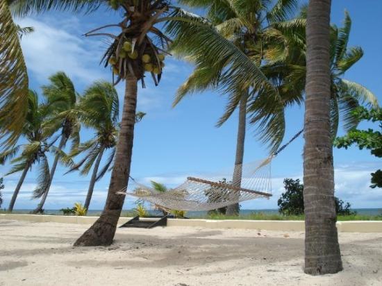 Sonaisali Island ภาพถ่าย