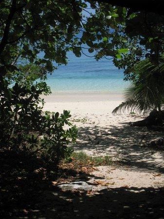 Suva Photo