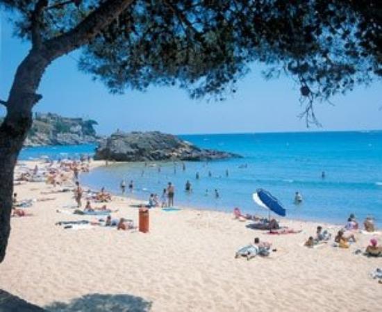Palamos, Spain: J'en suis malade... Nostalgie........