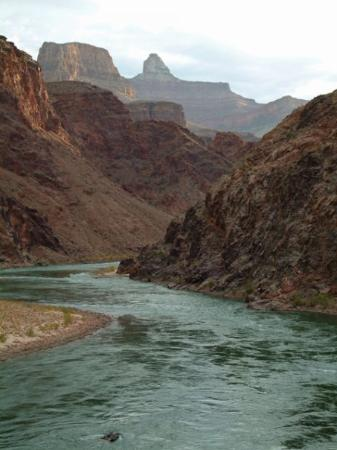 Grand Canyon National Park Az Pipe Creek Beach At The Junction Of Bright