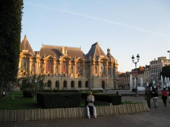 Musee des Beaux Arts : An afternoon walk around Lille brought me to the large public square. This is a shot of the Muse