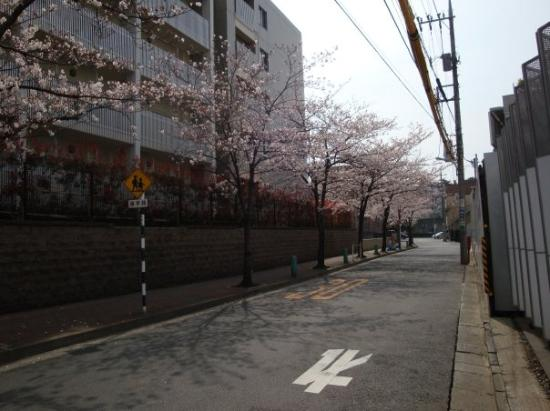 Ota, Jepang: Nishi-Magome on 2009, April 5th