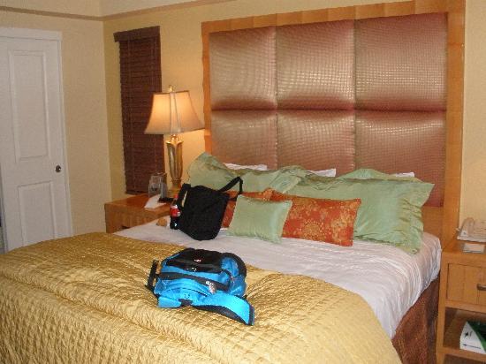 ดีเซิธโรสรีสอร์ต: Main bedroom