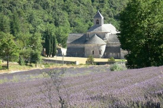 Abbaye de Sénanque : [Abbaye Notre-Dame de Sénanque]