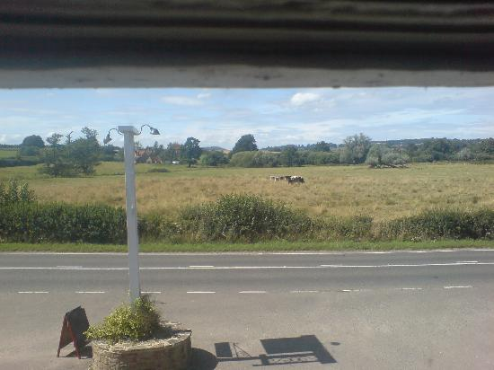 Badgers B&B: Gorgeous view from the Mill room